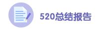 520总结报告